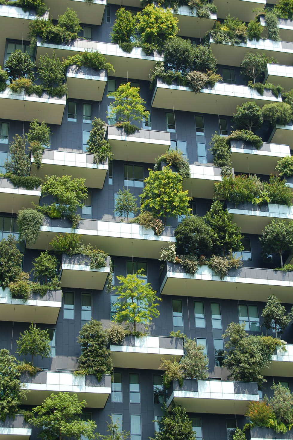 itrum-customer-story-worldfavor-sustainability-platform